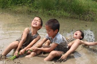 三重県|野外体験保育の取組について